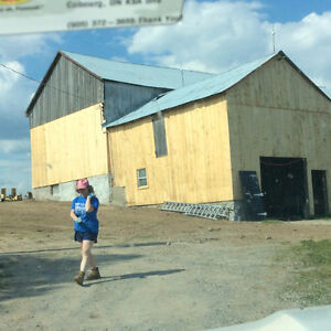BARN RENOVATIONS AND PAINTING 45 YRS EXP. Belleville Belleville Area image 2