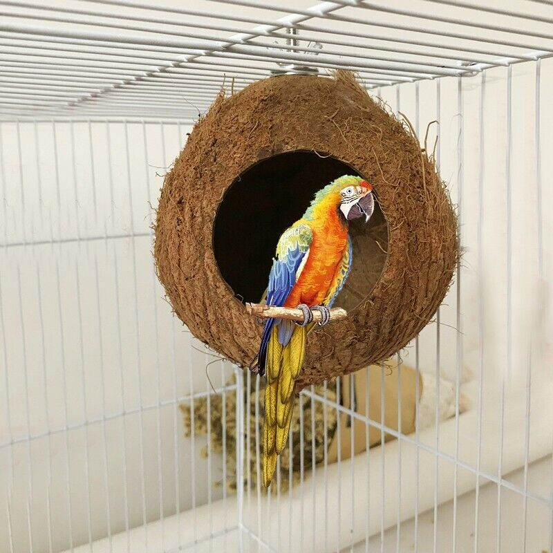 Natural Coconut Shell Birds Nest House Hut Cage Feeder Pet Parrot Parakeet Toy