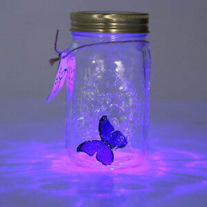 REALISTIC (FAKE) BUTTERFLY IN A ILLUMINATING JAR Cambridge Kitchener Area image 3