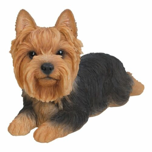 NEW Yorkshire Terrier Lying Down Small Figurine - Life Like Statue Home / Garden