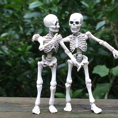 Movable Mr. Bones Skeleton Human Model Skull Full Body Mini Figure Toy Halloween (Toy Skeleton)
