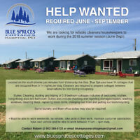 Cleaners/Housekeepers wanted for cottages in Hampton