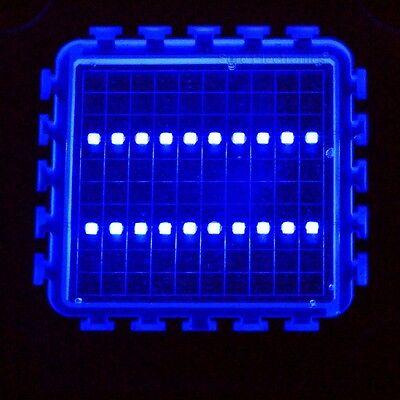 Blue High Power Led Light Smd Lamp - Aquarium Diy