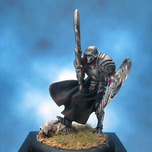 Painted-Rackham-Confrontation-Miniature-Sentinel-of-Danakil-I