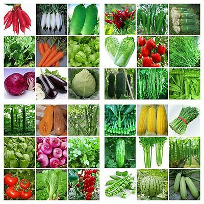 HEIRLOOM VEGETABLE GARDEN SEEDS NON GMO / ...