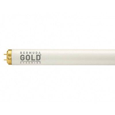 Solarium Röhren Bermuda Gold 2,0 % 100W Sonnenliege NEU