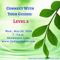 Connect with Your Guides: Level 2