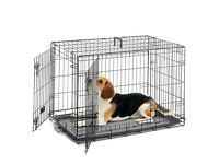 Large dog crate (used but great condition)