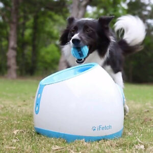iFetch Too automatic tennis ball launcher for dogs