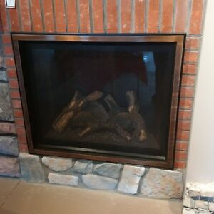 showroom model fireplace gas  1 year old