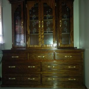 Wardrobe/Cabinet (from Mexico) Special Kitchener / Waterloo Kitchener Area image 3