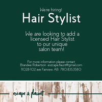 Hairstylist, Barber, and Wellness Practitioner for Hire Fairview