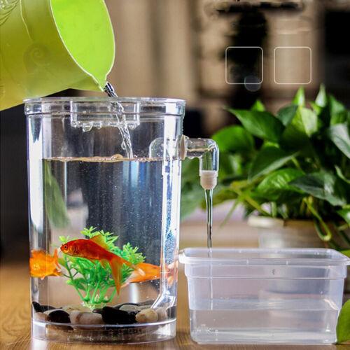 Creative Ecology Mini LED Fish Tank Luminous Glass Tank Aquarium Fish Tank 7