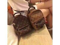 LV bag backbag Louis Vuitton