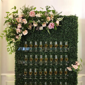 Champagne Walls! YES!