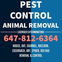 MOUSE RAT TREATMENT PEST CONTROL WILDLIFE ANIMAL REMOVAL RACCOON