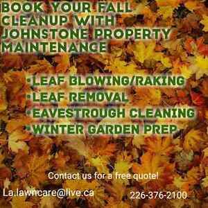 Leaf clean up London Ontario image 1