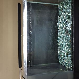 5 gallon fluval tank with filter