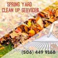 Spring Yard Cleaning Services