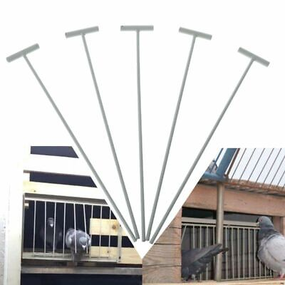 5Pcs Bird Racing Pigeon Cage Door Stainless Steel Entrance Wire Trap Door