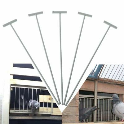 5 Pcs Bird Racing Pigeon Cage Door Stainless Steel Entrance Wire Trap Door New