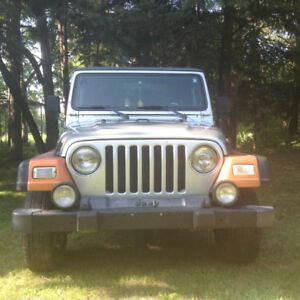 2002 Jeep TJ (extra tires, Leather Seats, and more)