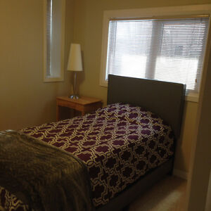 Walkout , furnished , newly renovated basement Suites