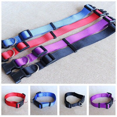 - Pet Dog Nylon Collars Charming Solid Adjustable Collar 4 Colors Supplies