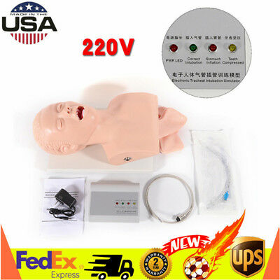 220v Intubation Manikin Study Teaching Model Airway Management Trainer Pvc