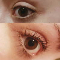 SPRING SPECIAL Lash lift & Tint Extensions and Waxing