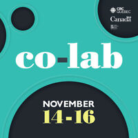 The Co-LAB Experience: Youth Employment Innovation & Workshops
