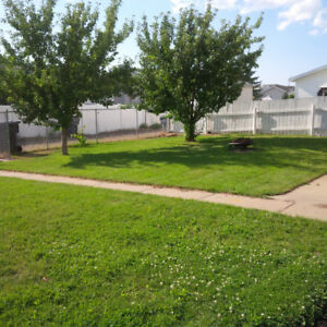 Beautiful Crescent Heights Home! 3 bed & 2 full bath