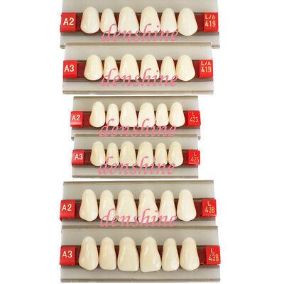 Ce Acrylic Resin Denture Dental Upper Anterior Teeth Shade G419 425 438 A2 A3