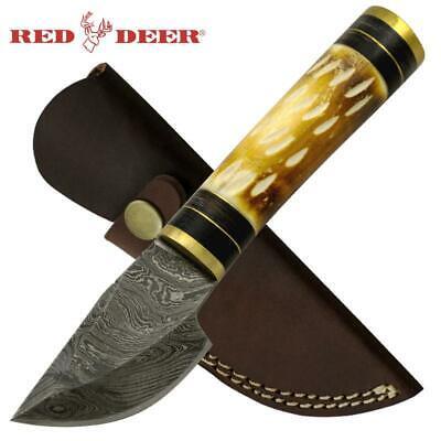 Custom Handmade Twist Damascus Buffalo Bone Hunting Skinning Knife Curved Blade