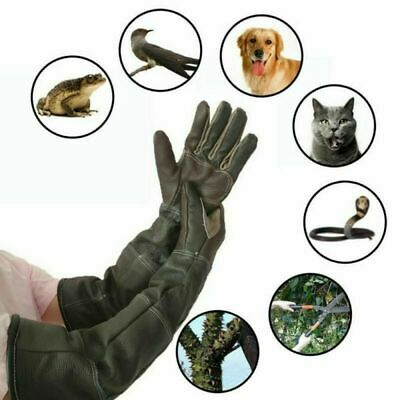 1Paar Anti Biss Handschuhe Tier Hundebiss Training Anti-Kratz Schutzhandschuhe
