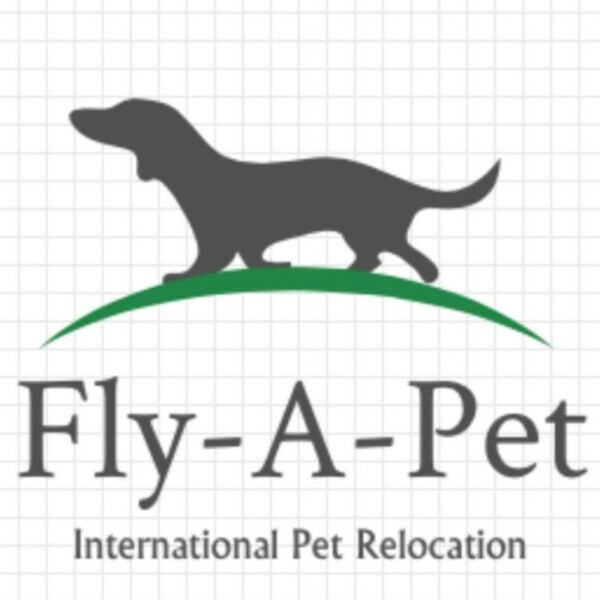 International Pet Relocation Service | East Coast / Marine