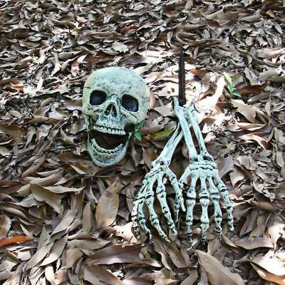 3PCS Halloween beängstigend Skelett Dekorationen Knochen Schädel Hand Kopf Dekor