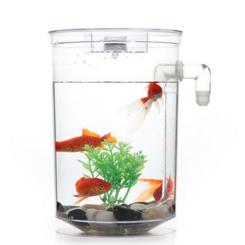 Creative Ecology Mini LED Fish Tank Luminous Glass Tank Aquarium Fish Tank 3