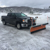 Snow removal / commercial plow available