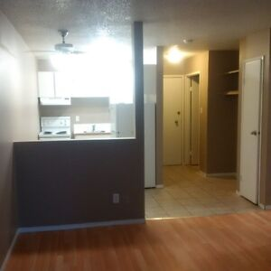 Hurry up!! 2.5 months rent off on newly renovated apartment!!