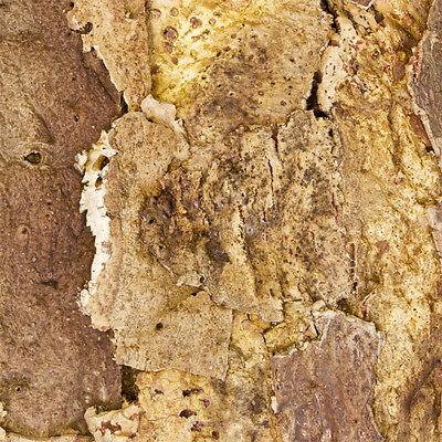 "Zierkorkrückwand - ""Wüste"" 90 x 60 cm , Naturkork Rückwand fürs Terrarium"