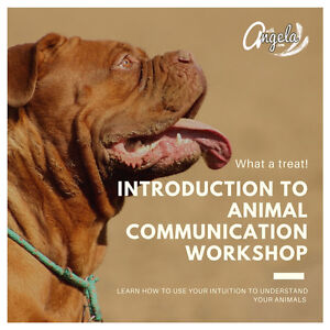 Introduction to Animal Communication Workshop