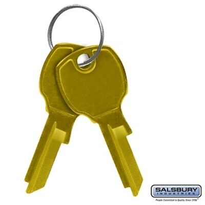 Salsbury Key Blanks for Locks of 4C Horizontal Mailboxes Box of (50) Mailer - 4c Horizontal Mailboxes Box