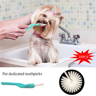 PET Dog Dental Clinic Care Kit Toothbrush Toothpick Toothpaste Pet Supplies Cat