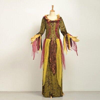 Ladies Fairy Dress Princess Medieval Vintage Renaissance Fancy Dress - Renaissance Fairy Dress