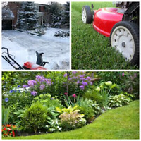 Professional Lawn Care $20up