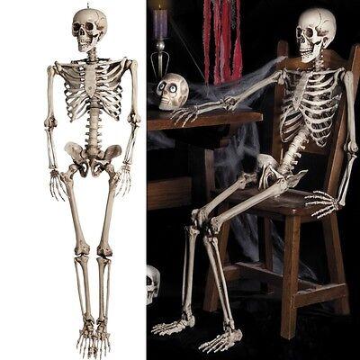 Dreidimensionales SKELETT Knochengerüst 160 cm Halloween Deko