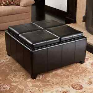 4 chamber flippable top ottoman Windsor Region Ontario image 1