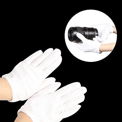 Cotton Inspection Lisle Gloves For Archives Jewelry Lens Antique Universal White