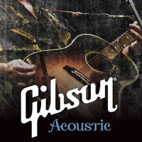 An Evening with Gibson Acoustic at Long & McQuade Hamilton